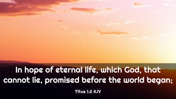 Picture 03 - Titus 1:2 KJV 4K Wallpaper - In hope of eternal life, which God, that cannot - 4K Wallpaper Bible Verse