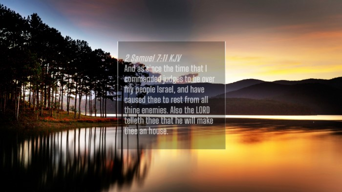 Picture 04 - 2 Samuel 7:11 KJV 4K Wallpaper - And as since the time that I commanded judges to - 4K Wallpaper Bible Verse
