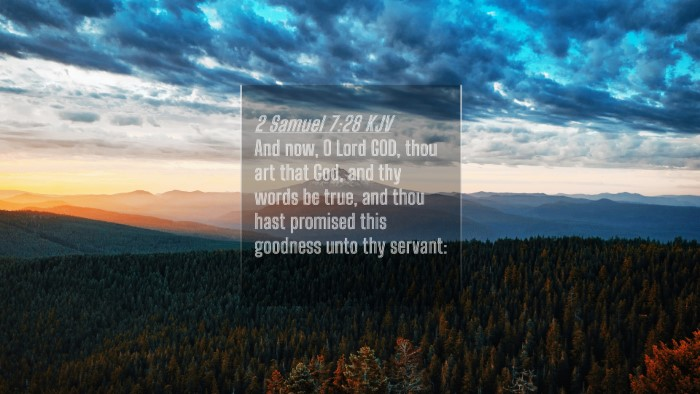 Picture 04 - 2 Samuel 7:28 KJV 4K Wallpaper - And now, O Lord GOD, thou art that God, and thy - 4K Wallpaper Bible Verse