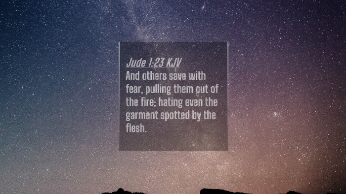 Picture 04 - Jude 1:23 KJV 4K Wallpaper - And others save with fear, pulling them out of - 4K Wallpaper Bible Verse
