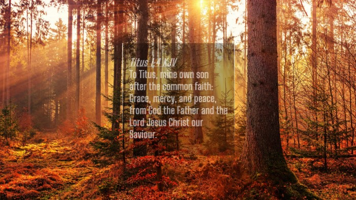 Picture 04 - Titus 1:4 KJV 4K Wallpaper - To Titus, mine own son after the common faith: - 4K Wallpaper Bible Verse