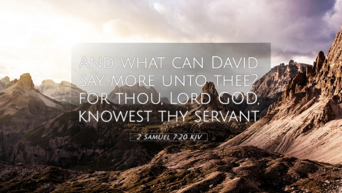 Picture 05 - 2 Samuel 7:20 KJV 4K Wallpaper - And what can David say more unto thee? for thou, - 4K Wallpaper Bible Verse