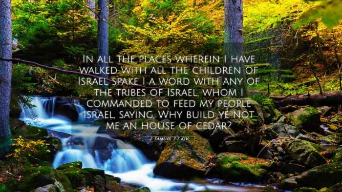Picture 05 - 2 Samuel 7:7 KJV 4K Wallpaper - In all the places wherein I have walked with all - 4K Wallpaper Bible Verse