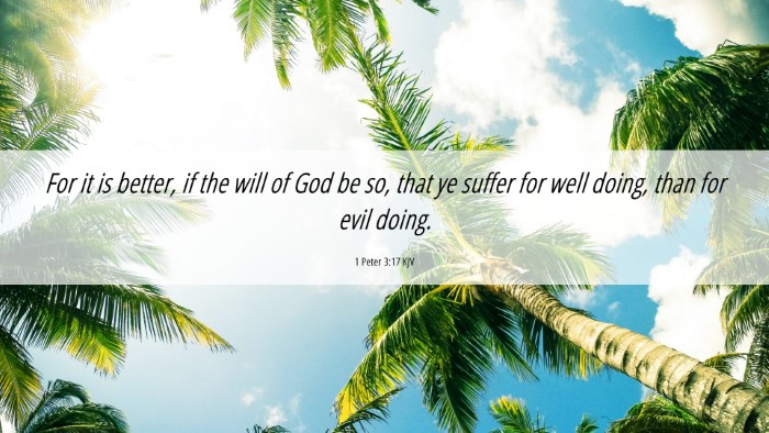 Picture 06 - 1 Peter 3:17 KJV 4K Wallpaper - For it is better, if the will of God be so, that - 4K Wallpaper Bible Verse