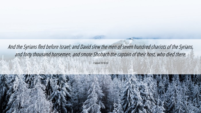Picture 06 - 2 Samuel 10:18 KJV 4K Wallpaper - And the Syrians fled before Israel; and David - 4K Wallpaper Bible Verse