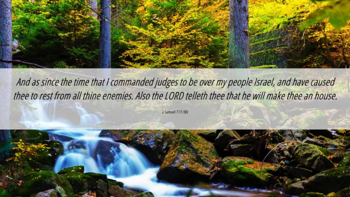 Picture 06 - 2 Samuel 7:11 KJV 4K Wallpaper - And as since the time that I commanded judges to - 4K Wallpaper Bible Verse