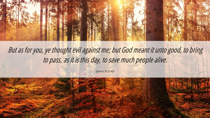 Picture 06 - Genesis 50:20 KJV 4K Wallpaper - But as for you, ye thought evil against me; but - 4K Wallpaper Bible Verse