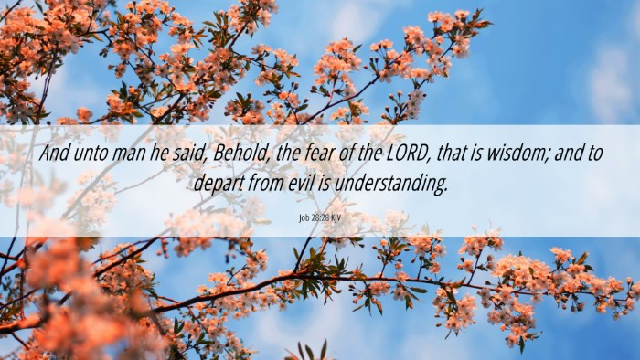 Picture 06 - Job 28:28 KJV 4K Wallpaper - And unto man he said, Behold, the fear of the - 4K Wallpaper Bible Verse