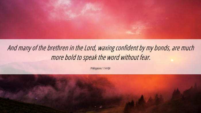 Picture 06 - Philippians 1:14 KJV 4K Wallpaper - And many of the brethren in the Lord, waxing - 4K Wallpaper Bible Verse