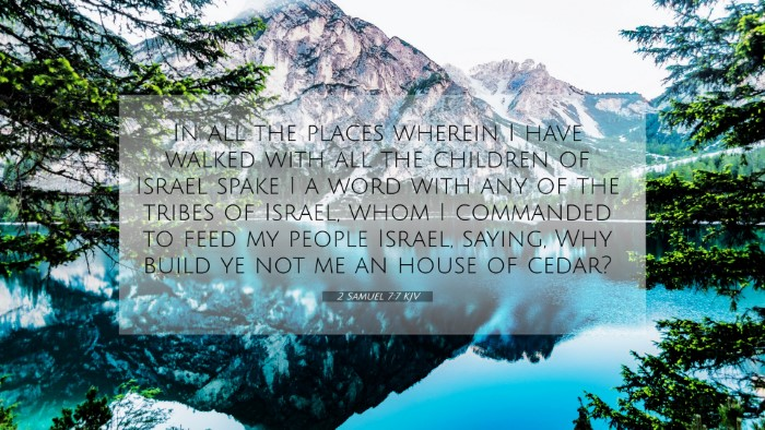 Picture 07 - 2 Samuel 7:7 KJV 4K Wallpaper - In all the places wherein I have walked with all - 4K Wallpaper Bible Verse