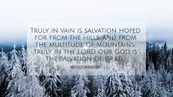 Picture 07 - Jeremiah 3:23 KJV 4K Wallpaper - Truly in vain is salvation hoped for from the - 4K Wallpaper Bible Verse