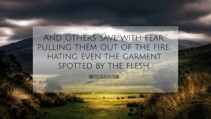 Picture 07 - Jude 1:23 KJV 4K Wallpaper - And others save with fear, pulling them out of - 4K Wallpaper Bible Verse