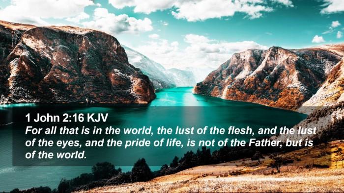 1 John 2:16 KJV Desktop Wallpaper - For all that is in the world, the lust of the - Desktop Bible Verse Wallpaper