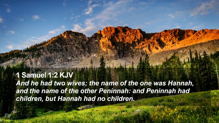 1 Samuel 1:2 KJV Desktop Wallpaper - And he had two wives; the name of the one was - Desktop Bible Verse Wallpaper
