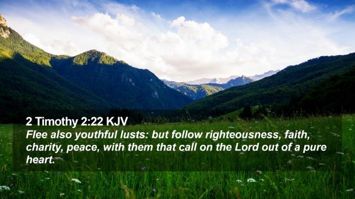 2 Timothy 2:22 KJV Desktop Wallpaper - Flee also youthful lusts: but follow - Desktop Bible Verse Wallpaper