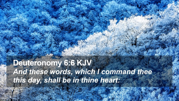 Deuteronomy 6:6 KJV Desktop Wallpaper - And these words, which I command thee this day, - Desktop Bible Verse Wallpaper