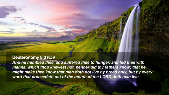 Deuteronomy 8:3 KJV Desktop Wallpaper - And he humbled thee, and suffered thee to hunger, - Desktop Bible Verse Wallpaper