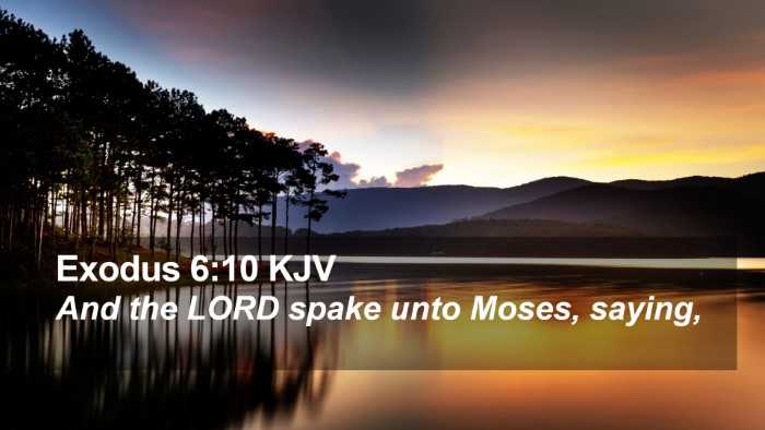 Exodus 6:10 KJV Desktop Wallpaper - And the LORD spake unto Moses, - Desktop Bible Verse Wallpaper