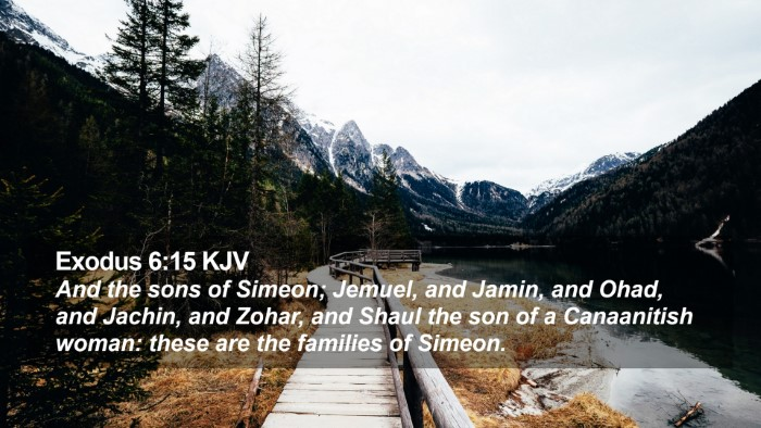 Exodus 6:15 KJV Desktop Wallpaper - And the sons of Simeon; Jemuel, and Jamin, and - Desktop Bible Verse Wallpaper