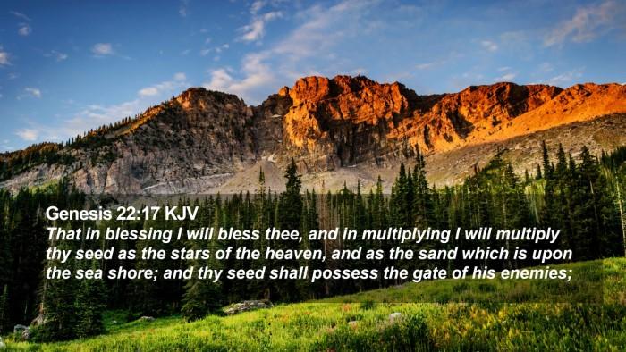 Genesis 22:17 KJV Desktop Wallpaper - That in blessing I will bless thee, and in - Desktop Bible Verse Wallpaper