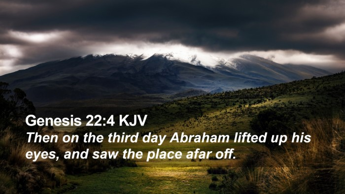 Genesis 22:4 KJV Desktop Wallpaper - Then on the third day Abraham lifted up his eyes, - Desktop Bible Verse Wallpaper