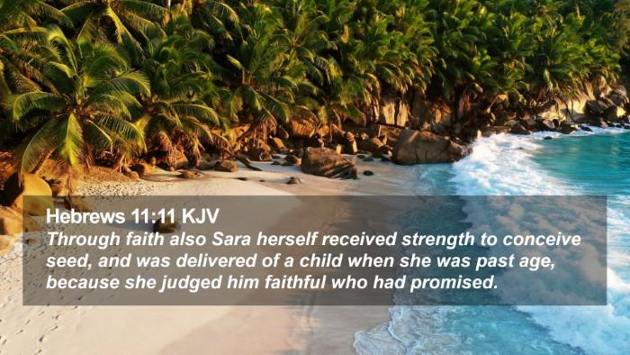 Hebrews 11:11 KJV Desktop Wallpaper - Through faith also Sara herself received strength - Desktop Bible Verse Wallpaper