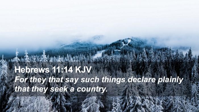 Hebrews 11:14 KJV Desktop Wallpaper - For they that say such things declare plainly - Desktop Bible Verse Wallpaper
