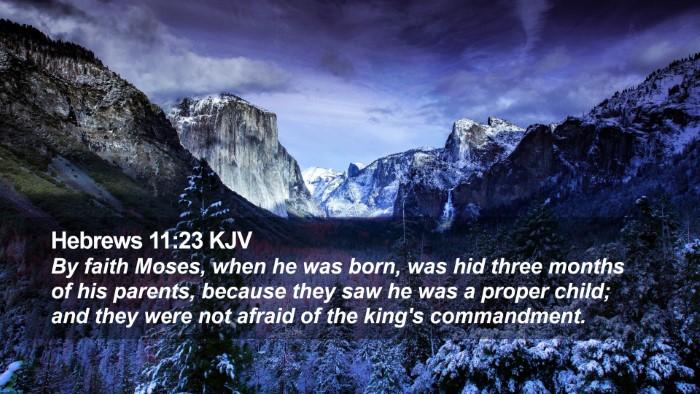 Hebrews 11:23 KJV Desktop Wallpaper - By faith Moses, when he was born, was hid three - Desktop Bible Verse Wallpaper