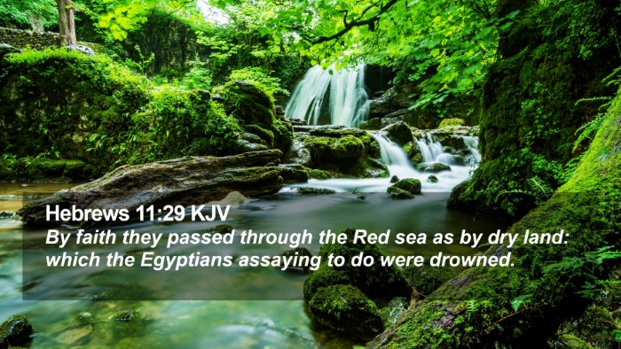 Hebrews 11:29 KJV Desktop Wallpaper - By faith they passed through the Red sea as by - Desktop Bible Verse Wallpaper