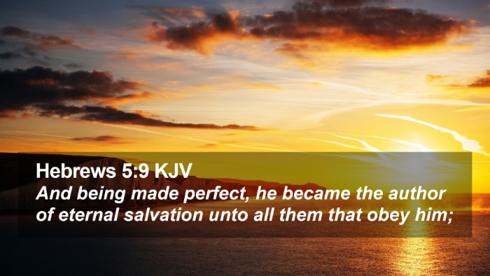 Hebrews 5:9 KJV Desktop Wallpaper - And being made perfect, he became the  author of