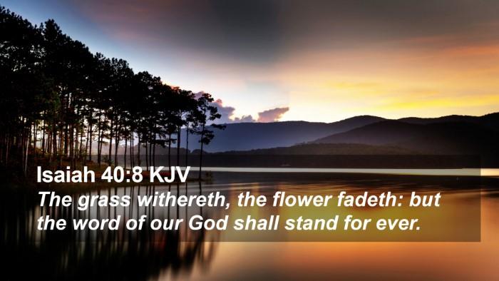 Isaiah 40:8 KJV Desktop Wallpaper - The grass withereth, the flower fadeth: but the - Desktop Bible Verse Wallpaper