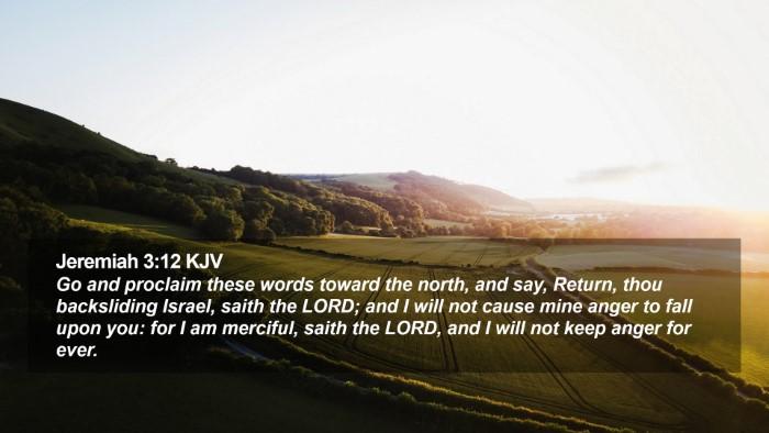 Jeremiah 3:12 KJV Desktop Wallpaper - Go and proclaim these words toward the north, and - Desktop Bible Verse Wallpaper