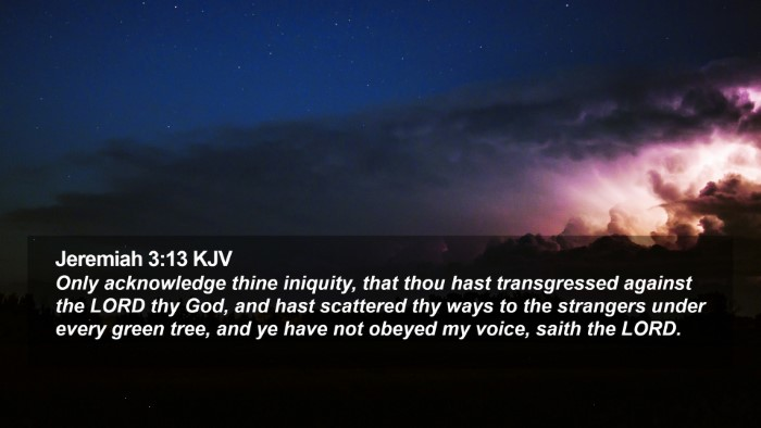 Jeremiah 3:13 KJV Desktop Wallpaper - Only acknowledge thine iniquity, that thou hast - Desktop Bible Verse Wallpaper