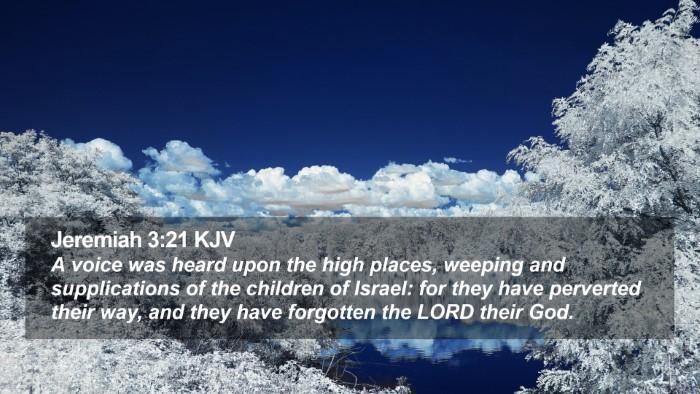 Jeremiah 3:21 KJV Desktop Wallpaper - A voice was heard upon the high places, weeping - Desktop Bible Verse Wallpaper