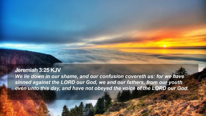 Jeremiah 3:25 KJV Desktop Wallpaper - We lie down in our shame, and our confusion - Desktop Bible Verse Wallpaper