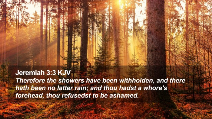 Jeremiah 3:3 KJV Desktop Wallpaper - Therefore the showers have been withholden, and - Desktop Bible Verse Wallpaper