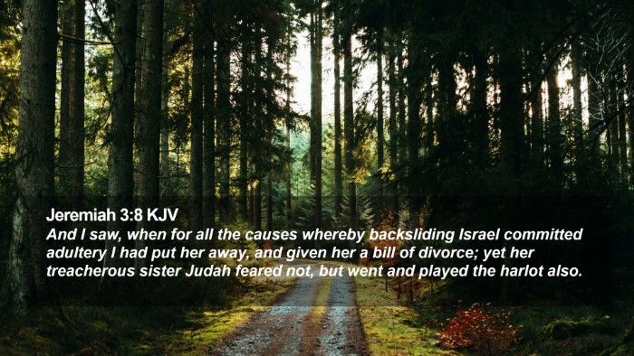 Jeremiah 3:8 KJV Desktop Wallpaper - And I saw, when for all the causes whereby - Desktop Bible Verse Wallpaper