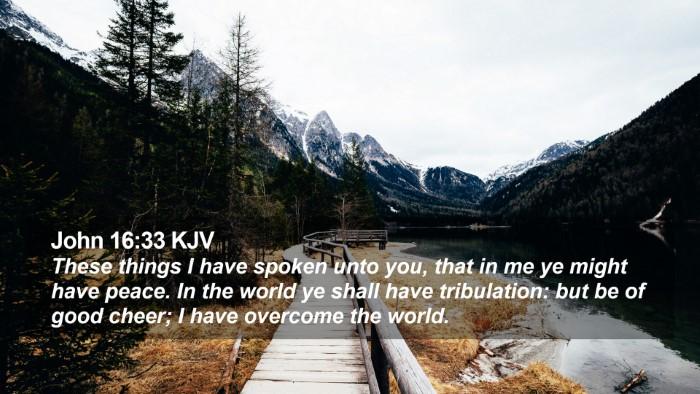 John 16:33 KJV Desktop Wallpaper - These things I have spoken unto you, that in me - Desktop Bible Verse Wallpaper
