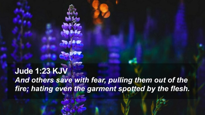 Jude 1:23 KJV Desktop Wallpaper - And others save with fear, pulling them out of - Desktop Bible Verse Wallpaper