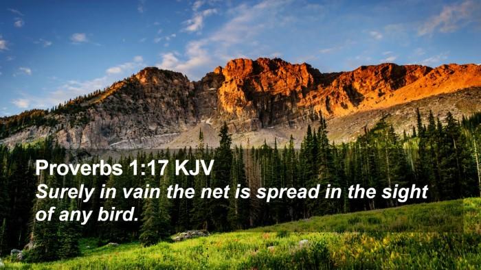 Proverbs 1:17 KJV Desktop Wallpaper - Surely in vain the net is spread in the sight of - Desktop Bible Verse Wallpaper