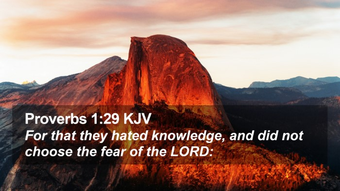 Proverbs 1:29 KJV Desktop Wallpaper - For that they hated knowledge, and did not choose - Desktop Bible Verse Wallpaper