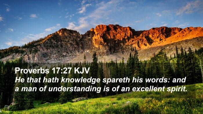 Proverbs 17:27 KJV Desktop Wallpaper - He that hath knowledge spareth his words: and a - Desktop Bible Verse Wallpaper