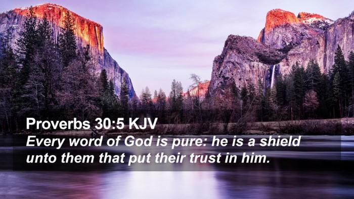 Proverbs 30:5 KJV Desktop Wallpaper - Every word of God is pure: he is a shield unto - Desktop Bible Verse Wallpaper