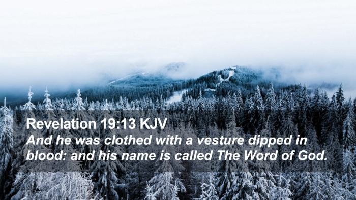 Revelation 19:13 KJV Desktop Wallpaper - And he was clothed with a vesture dipped in - Desktop Bible Verse Wallpaper