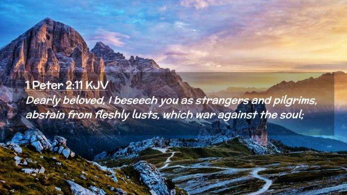 Picture 02 - 1 Peter 2:11 KJV Desktop Wallpaper - Dearly beloved, I beseech you as strangers and - Desktop Bible Verse Wallpaper