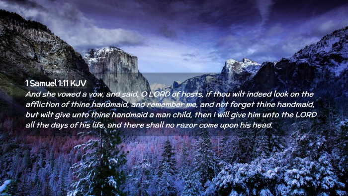Picture 02 - 1 Samuel 1:11 KJV Desktop Wallpaper - And she vowed a vow, and said, O LORD of hosts, - Desktop Bible Verse Wallpaper