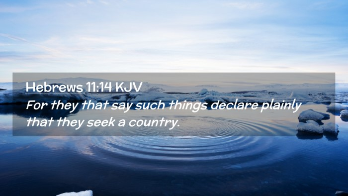 Picture 02 - Hebrews 11:14 KJV Desktop Wallpaper - For they that say such things declare plainly - Desktop Bible Verse Wallpaper