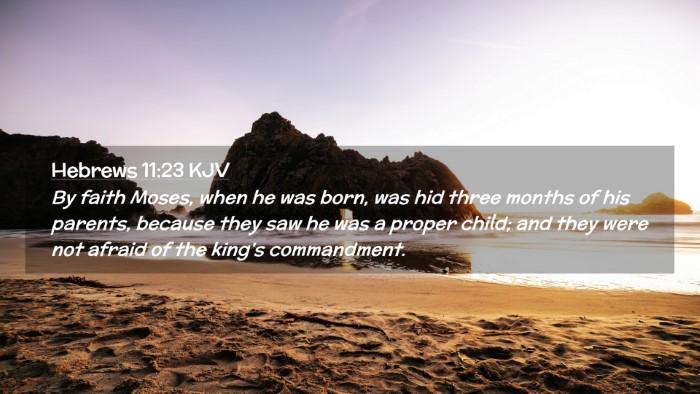 Picture 02 - Hebrews 11:23 KJV Desktop Wallpaper - By faith Moses, when he was born, was hid three - Desktop Bible Verse Wallpaper
