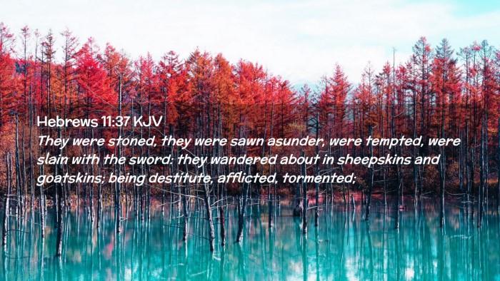 Picture 02 - Hebrews 11:37 KJV Desktop Wallpaper - They were stoned, they were sawn asunder, were - Desktop Bible Verse Wallpaper