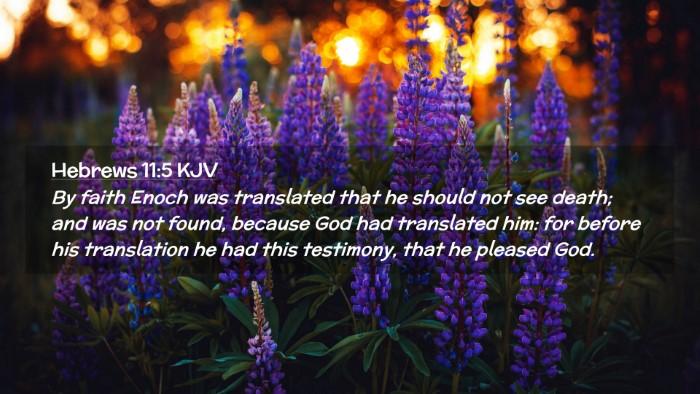Picture 02 - Hebrews 11:5 KJV Desktop Wallpaper - By faith Enoch was translated that he should not - Desktop Bible Verse Wallpaper